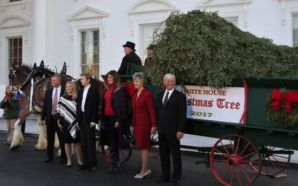 Llega árbol de Navidad a la Casa Blanca